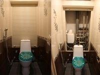 Роллеты сантехнические в ванну и туалет (ручное управление)